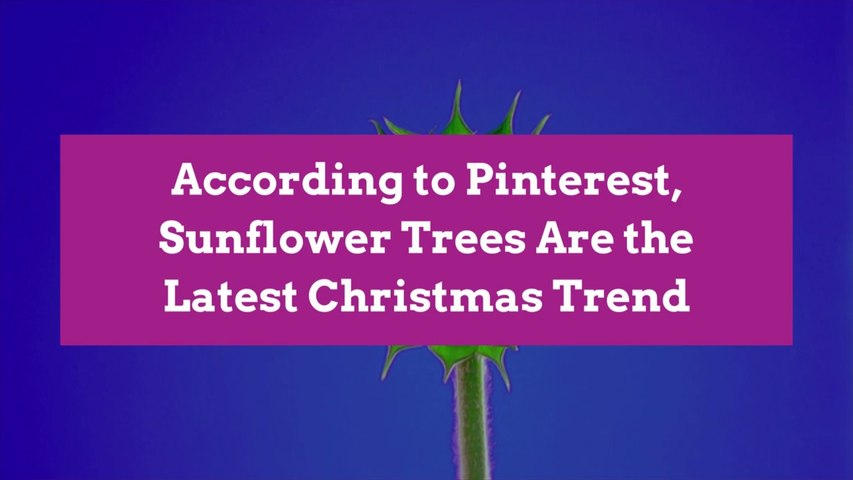 According to Pinterest, Sunflower Trees Are the Latest Christmas Trend
