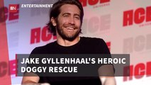Jake Gyllenhaal Is A Real Life Hero
