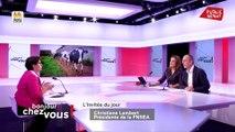 Best Of Bonjour Chez Vous !  Invitée politique : Christiane Lambert (24/10/19)