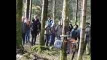 Démonstration d'élagage hydraulique à Villers-sous-Chalamont (25)