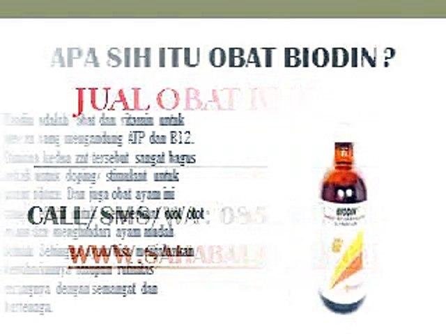 WA O85-227-9O2O2O Grosir Vitamin Ayam Bangkok Petarung Tangerang