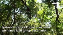From hotbed of crime to joggers' paradise: Nairobi forest thrives