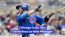 David Ross Now Works For The Chicago Cubs