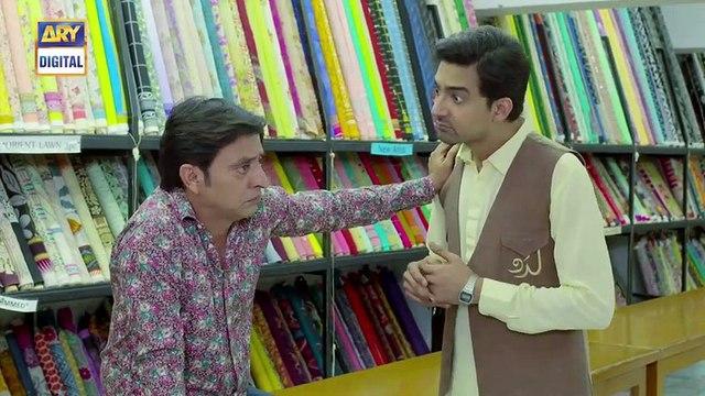 Barfi Laddu Epi 22 - 24th October 2019 - ARY Digital Drama