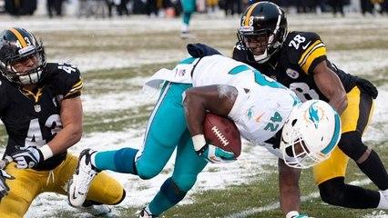 Week 14: Dolphins vs. Steelers highlights