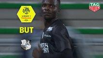 But Chadrac AKOLO (76ème) / AS Saint-Etienne - Amiens SC - (2-2) - (ASSE-ASC) / 2019-20