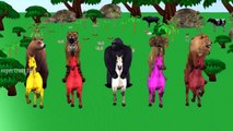 wild Animals Riding On Colors Horses For Kids