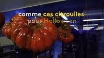 Bourgogne : Fabrice Gillotte et sa chocolaterie