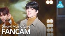 [예능연구소 직캠] SEVENTEEN - Home (S.COUPS), 세븐틴 - Home (에스쿱스) @Show Music core 20190202