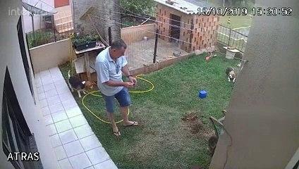 Un homme veut se débarrasser d'une fourmilière dans son jardin en utilisant de l'essence