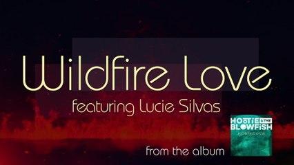 Hootie & The Blowfish - Wildfire Love