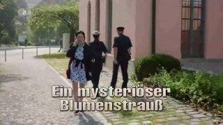 Die Rosenheim Cops 436 Staffel 19 Folge 7 Ein mysterioser Bl