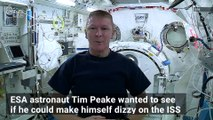 Astronaut Spins 80 Times to See if Dizziness Can Be Induced in Space