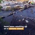 Ships Illegally Dump Plastic In Sea