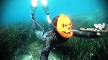 A Special Halloween Dive