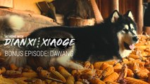 Bonus: The Story Behind Dianxi Xiaoge's Dog—Dawang