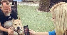 Une femme retrouve son chien perdu depuis trois ans grâce à une cannette de bière
