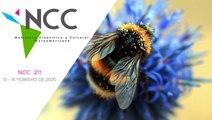 Noticiero Científico y Cultural Iberoamericano, emisión 211. 10 al 16 de febrero 2020