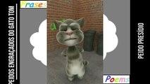Peidos engraçados do gato tom: Peido presídio, está cercado de todos os lados! [Frases e Poemas]