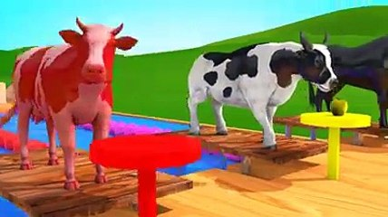 Horse Cow Donkey Animals at Swimming Pool Videos for Kids