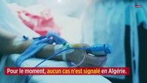 Coronavirus : l'Algérie sur le pied de guerre