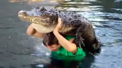 Man Performs Dangerous Stunts With Alligator