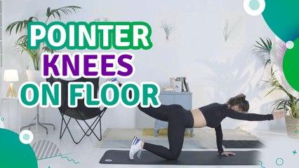Pointer, knees on floor - Fit People