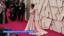 Red Carpet at the 2020 Oscars