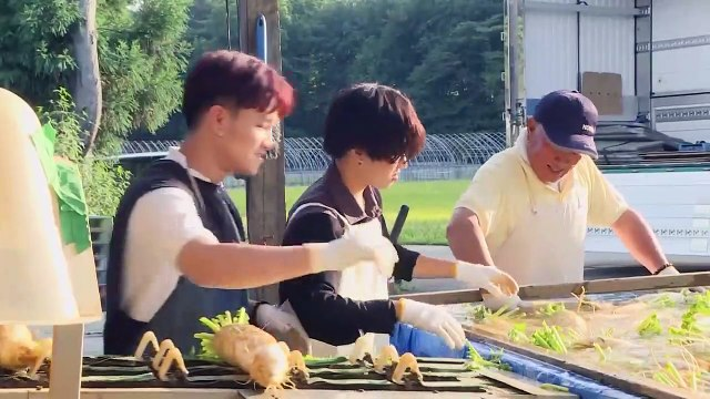 EXPERIENCE RADISH FAMILY FARM AND HOW TO MAKE MOCHI FOR GIRLS' DAY IN AKITA, JAPAN [秋田]