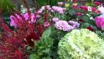 Reportage - Chaque année, le marché aux fleurs pour la Toussaint