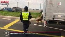 Les journalistes de France 2 tombent sur des migrants cachés dans un camion vers l'Angleterre (vidéo)