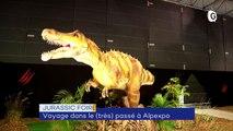 Dinosaures, Grand séchoir, Kevin Aymoz - 31 OCTOBRE 2019
