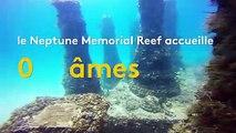 Floride : un cimetière sous-marin accueille 700 âmes