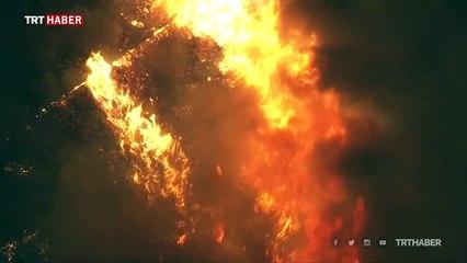 California'da yangınlar nedeniyle acil durum ilan edildi
