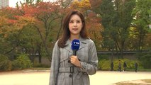 [날씨] 주말 큰 일교차, 미세먼지↑...고궁 속 단풍 / YTN