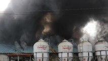 정읍 돼지 축사에 불, 1400마리 폐사 / YTN