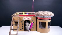 How to Make Amazing Kitten Cat House from Cardboard