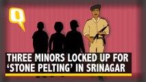 'Police Locked Us Up, Hit Us With Sticks' Alleges Srinagar Minor