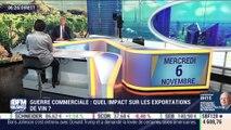 Guerre commerciale : quel impact sur les exportations de vins, Valérie Guérin – 06/11