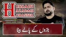 Noha Status 2019 - Akhir Hussain Maa Hoon - 2020 | Syed Raza Abbas Zaidi | Hussaini Azadari Channel