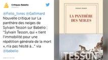 Sylvain Tesson remporte le prix Renaudot 2019 pour «La Panthère des neiges»