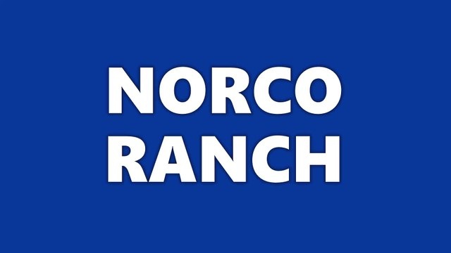 Norco Ranch: EGGS, EGGS, EGGS! WE LOVE EGGS!