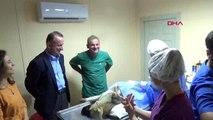Sinop-avrupalı veteriner adayları, sokak hayvanları için seferber