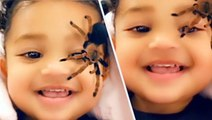 Stormi Laughs At Kylie Jenner Scaring Her With Spiders In New Video