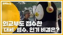 [자막뉴스] 외교부도 접수한 '대세' 펭수...인기 비결은? / YTN