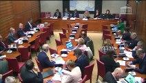 Commission du développement durable : Audition de membres du Haut Conseil pour le climat - Mercredi 6 novembre 2019