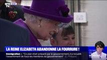 La reine Elizabeth II n'achètera plus de fourrure animale