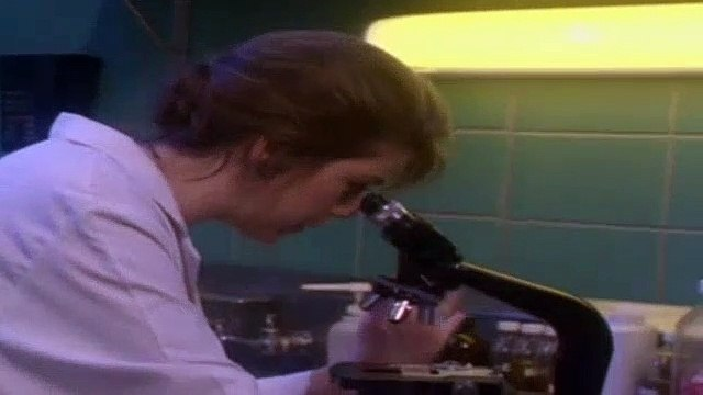 Forever Knight Season 2 Episode 25 A More Permanent Hell