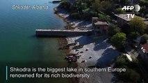 Fishy tacks: poaching threatens Balkans' biggest lake