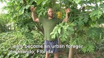 How to live off the land... in a major US city